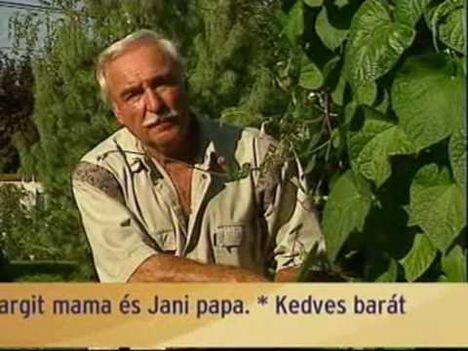 Bakacsi Béla (8)