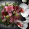 fehér színű virág a nyugi kertben 3