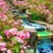 Csodás kert-3486