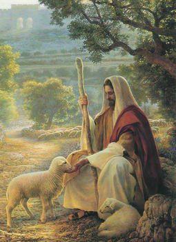 Jézus Bárányai Gyülnek köré