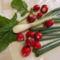 Friss tavaszi zöldségfélék