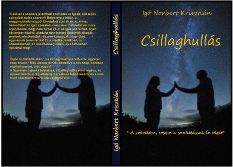 Csillaghullás ( a regény eredeti borítója )