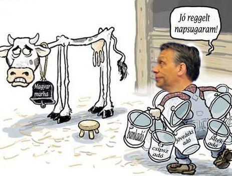 állattartás helyzete