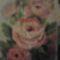 Rózsák (David Jansen nyomán) 2015.06.06.