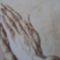 imádkozó kéz 1