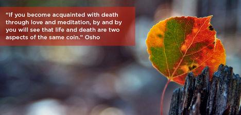 """""""Ha a halállal szereteten és meditáción keresztül ismerkedsz meg, akkor lassacskán..."""