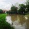Lajta folyó a torkolata felett egy kisebb árhullámnál, 2015. május 25.-én