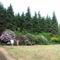 Örökzöldek és rododendronok