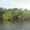 Az Amazonas partja...