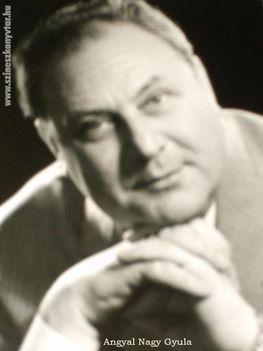 Angyal Nagy Gyula (3)
