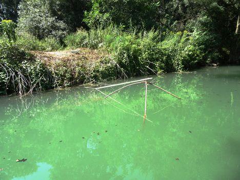 Dunasziget, táplizás a Kormosi Duna-ágon, Szigetközi hullámtéri vízpótlórendszer 2015