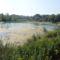 Rajka, Felső-Tilosi tó 2015. augusztus 31-én