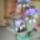 Emilia virágai