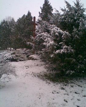 2015 téli táj