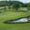 Alcsúti golfpálya