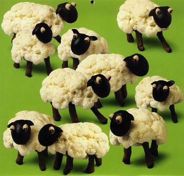 karfiol bárány