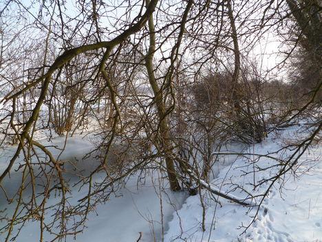 Rétárok csatorna (Márialiget határában)  téli viszonyok között, 2010. december 21.-én 2