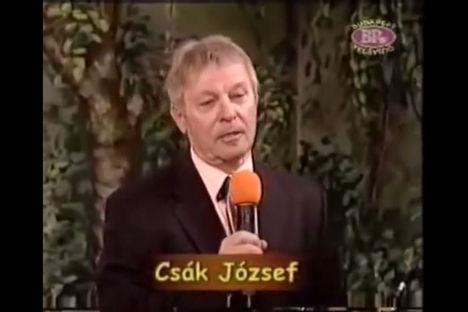 Csák József