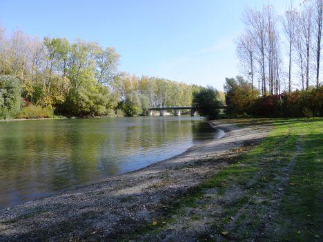 Mecsér, Mosoni-Duna folyó belterületi szakasza, 2015, 2015. október 27.-én