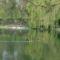 Csendélet a tónál 3