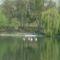 Csendélet a tónál 5
