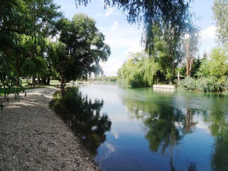 Mosoni-Duna, Mosonmagyaróvár a Rév utca mögötti terület, 2015. szeptember 09.-én