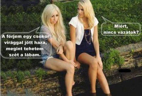 Szőke nők beszélgetnek