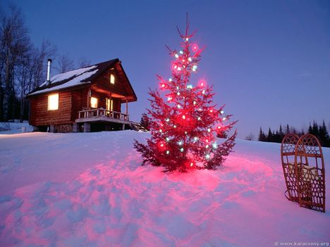 Áldott Karácsonyt ...
