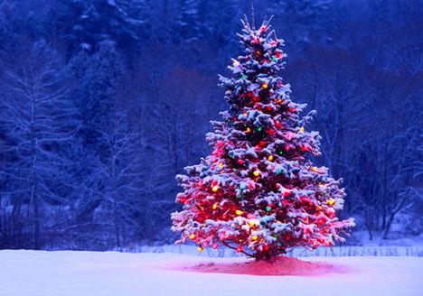 Boldog Karácsonyt! 5