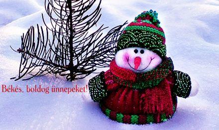 Kellemes Karácsonyi ünnepeket kívánok !   :)