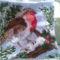 Vörösbegy a téli erdőben