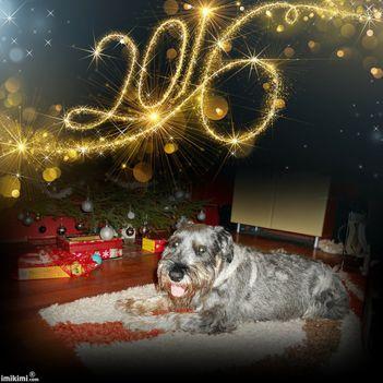 Bolodg Új Évet kívánok!