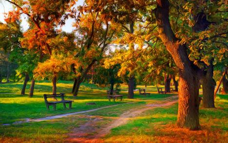 Ősz a parkban-0236