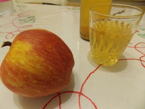 Saját készítésű gyümölcs ivólé