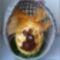 nyuszis tojás (2)