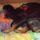 Rottweiler_1978345_4036_t