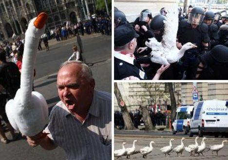 A rendőrők és a libák tüntetése a BAJNAI csomag  ellen!