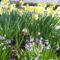 tavasz 16