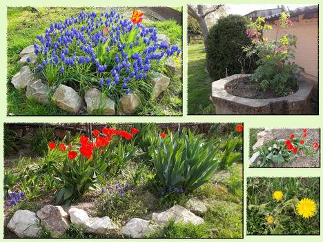 2016- tavasz 1