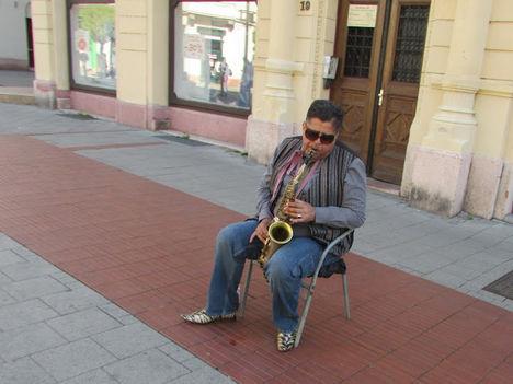 Győr utcai zenész