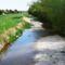 Lajta folyó ausztriai szakasza Wasenbrucknál, 2016. április 17.-én 10