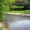 Lajta folyó ausztriai szakasza Wasenbrucknál, 2016. április 17.-én 2