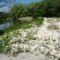Kertész gát a Mosoni-Duna legfelső szakaszán, Rajka 2016. április 22.-én 1