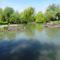 Kertész gát a Mosoni-Duna legfelső szakaszán, Rajka 2016. április 22.-én 5