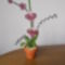 Orchidea-017_1986211_2315_s