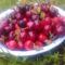 korai cseresznye