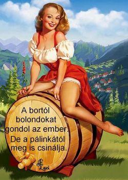 A bor biztonságos,-a pálinka veszélyes!