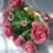 Első virágaim 3.