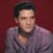Elvis Presley (14)