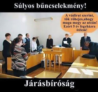 Járásbíróság!